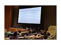we-want-to-right-to-know-trusteeship-council