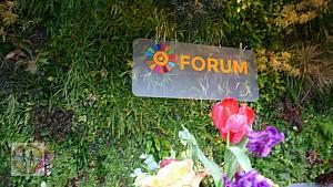 2017-seforallforum-on-green-plants2