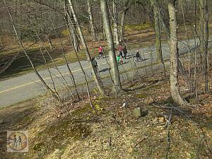 bikers in the forest park