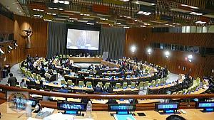 trusteeship-council-civil-society-wide